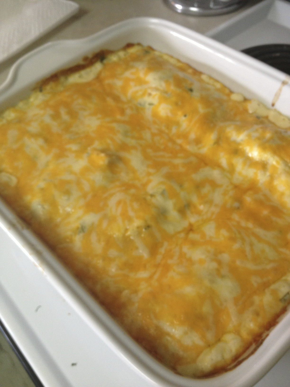 Sour Cream Chicken Enchiladas - REASONS TO SKIP THE HOUSEWORK