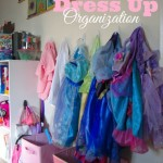 dress up organization