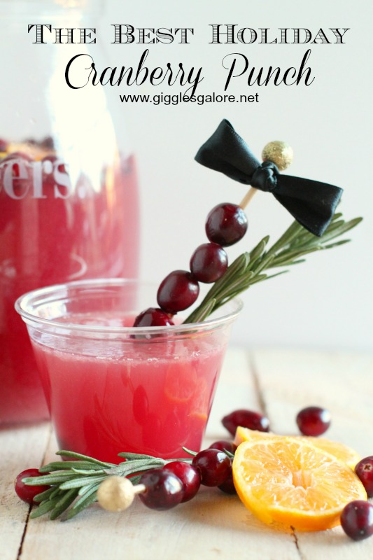 The-Best-Holiday-Cranberry-Punch_Giggles-Galore