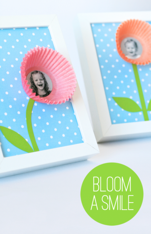 Bloom-A-Smile-578x893