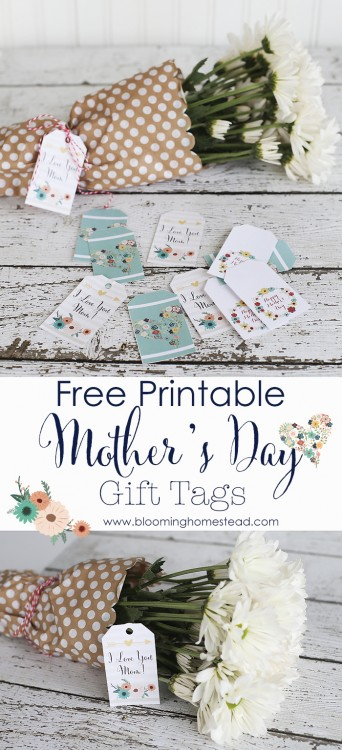 Mothers-Day-Gift-Tag-Printables-by-Bloominghomestead