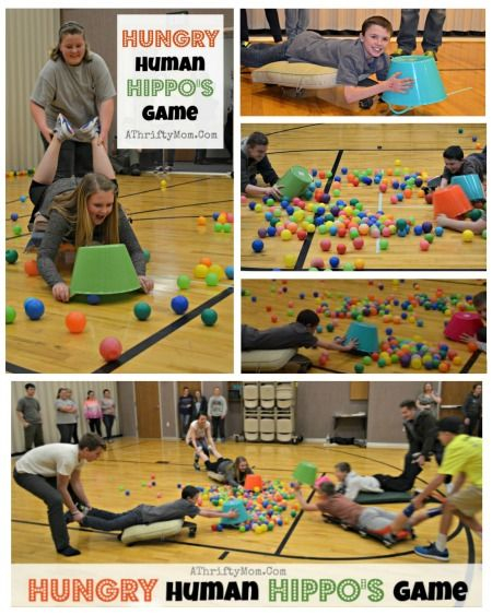 Group Party Games: Hungry Hippos