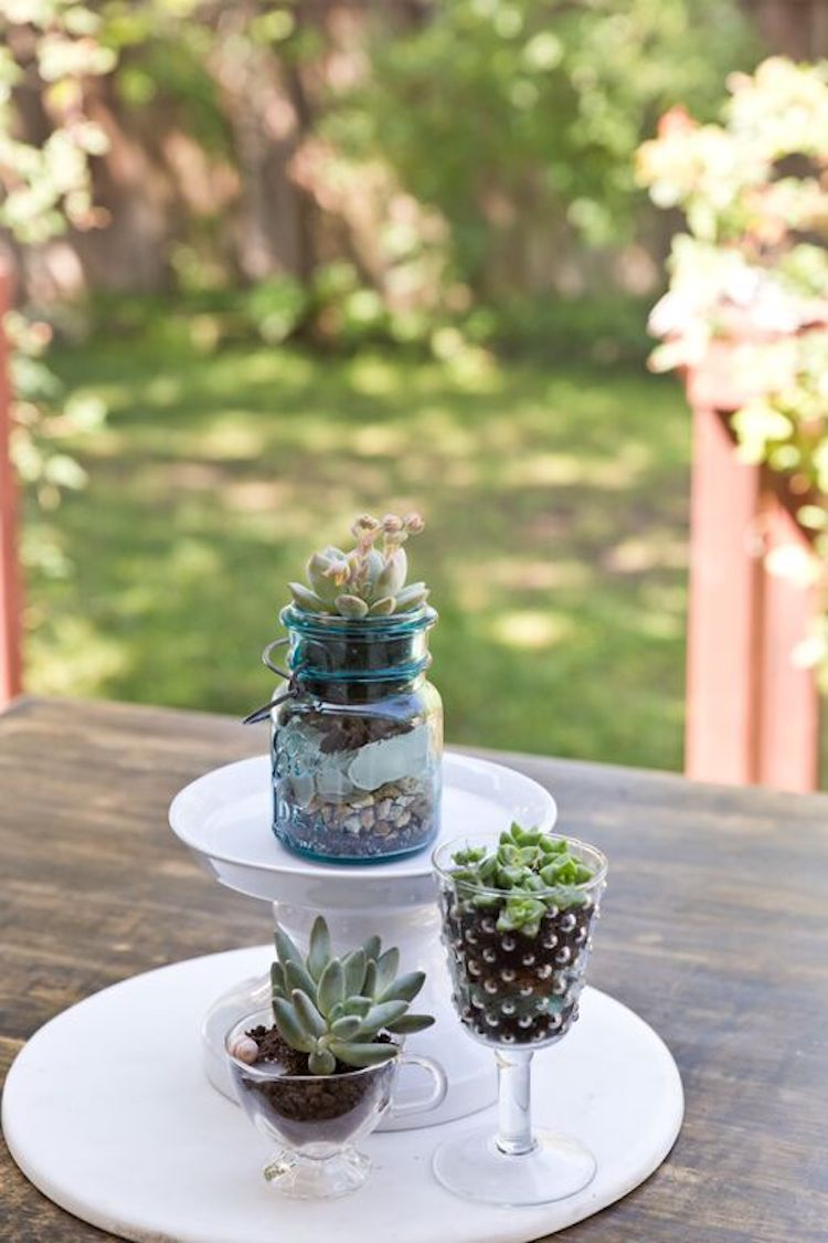 Succulent Table Centerpieces