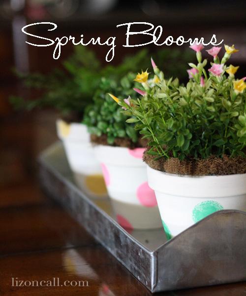 8 Spring-Blooms-1