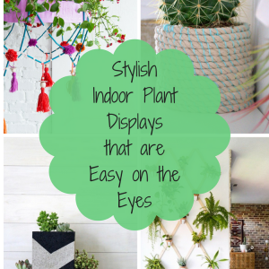 Stylish Indoor Plant Displays that are Easy on the Eyes