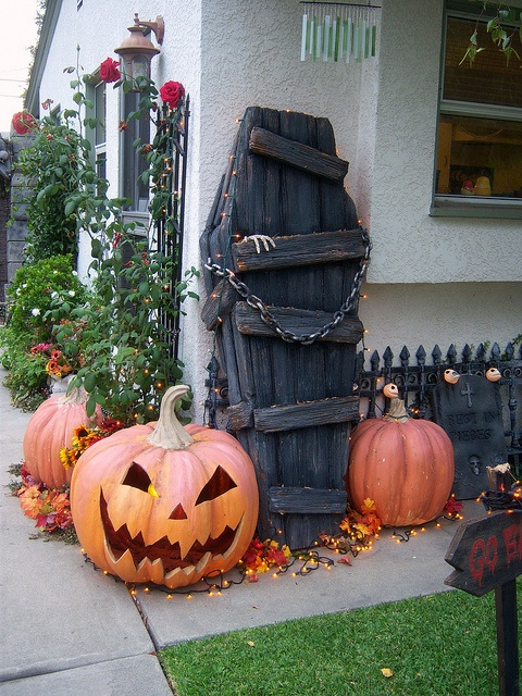 for-halloween-decorating