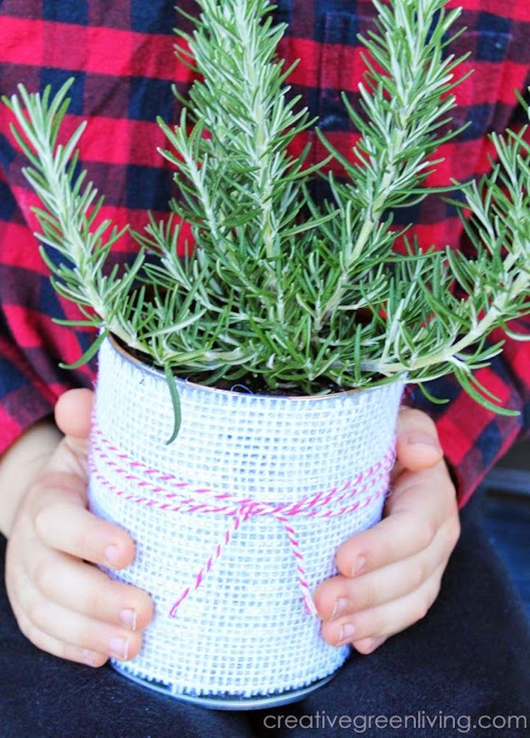 Decorative Tin Can Planter