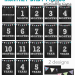 monthly baby photo signs