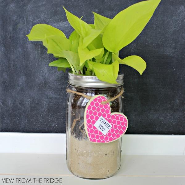Mason-Jar-DIY-Thank-You-Gift-sq1