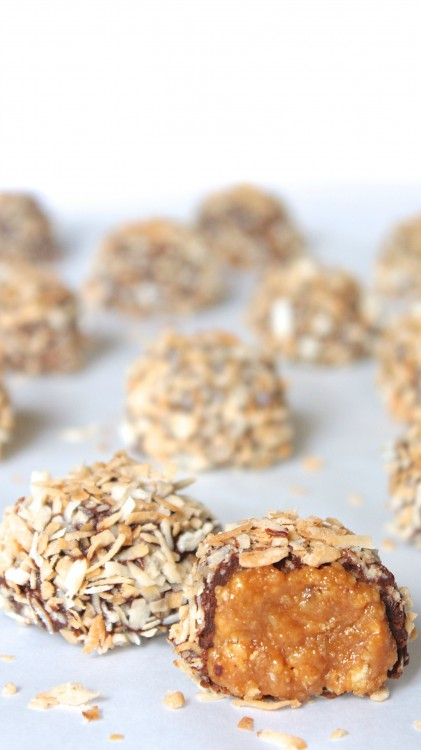 """alt=""""Two Samoa Truffles in foreground, faded ones in background"""""""