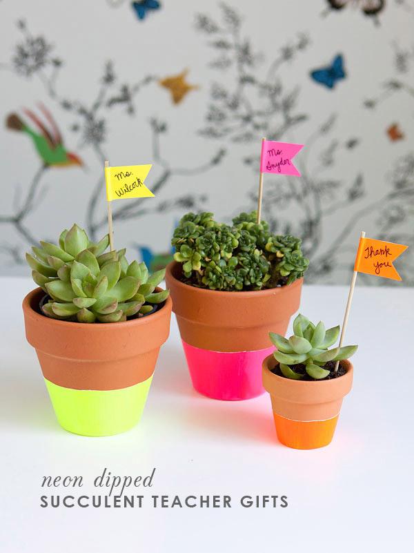 DIY-Succulent-Teacher-Gift