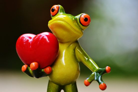 A Cute frog holding a heart
